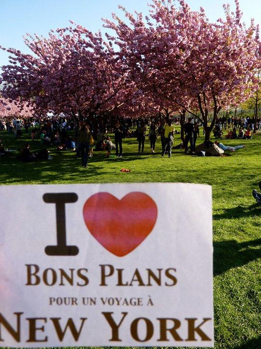 Sophie au Cherry Blossom Festival du Jardin botanique de Brooklyn, la fête des cerisiers en fleurs par les Japonais et les New Yorkais déguisés pour l'occasion. C'était très beau et très sympathique. - Avril 2011