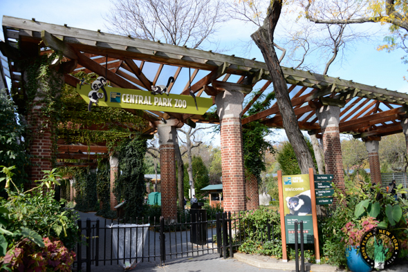 visiter le zoo de central park new york
