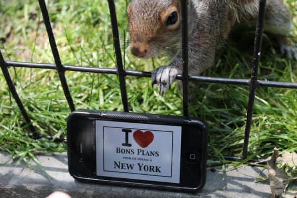 Nico & Teresa et... un écureuil de Central Park - Juin 2013