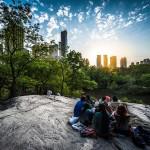 Que faire à Central Park lors de votre voyage à New York ?