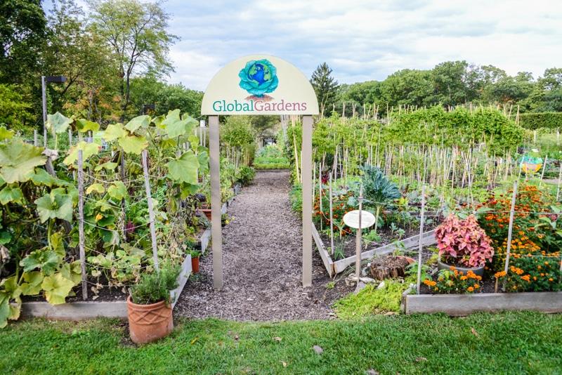 Visitez le jardin botanique de new york for Camping le jardin botanique limeray