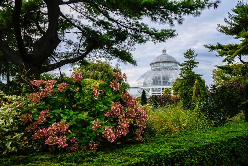 visitez le jardin botanique de new york