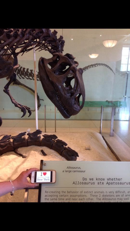 Dédicace et selfie d'un Allosaurus ou alors dédicace de Maryse au Musée d'Histoire Naturelle, c'est à vous de voir :) :)