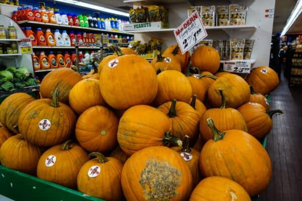 visite guidee decorations halloween citrouille