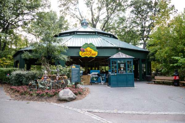 zoo-bronx-nyc-22