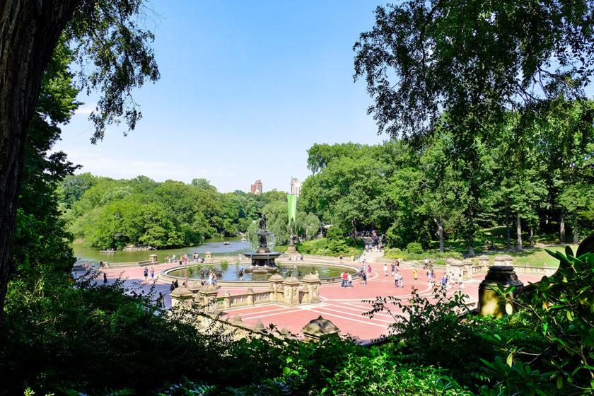 Visite guidée de Central Park à pied