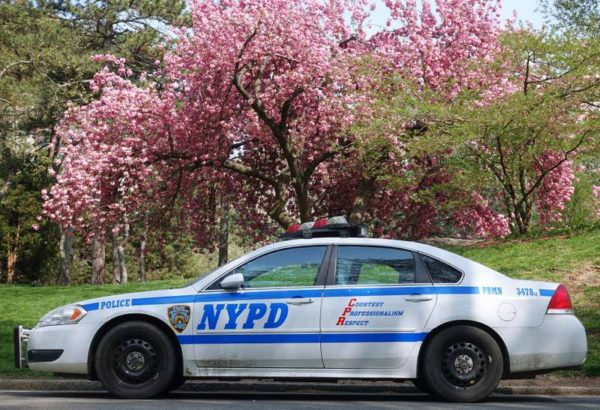 nypd central park