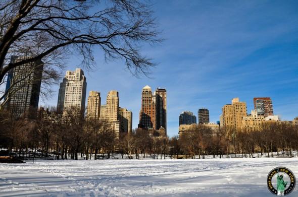 Christmas in NY (889)
