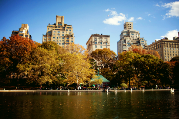 Que faire new york en septembre octobre et la - Que faire au jardin en septembre et octobre ...