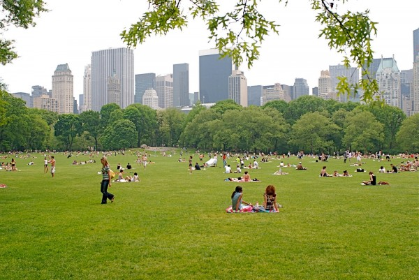 Central-Park-sheep-meadow-1-4