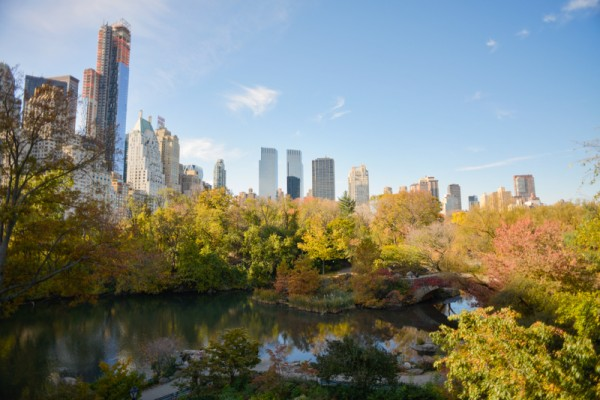 central-park-automne