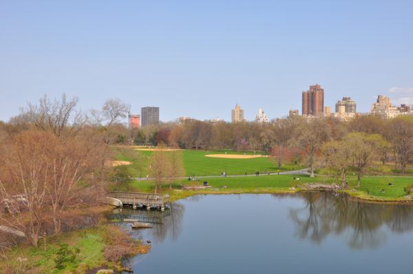 central-park-belvedere-castle