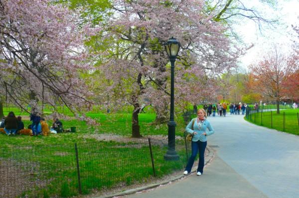 central-park-printemps-3