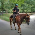 Un policier du NYPD sur son cheval - Laurent ( septembre 2010)