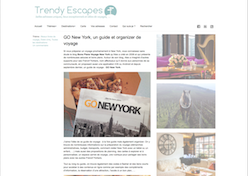 interview Trendy Escapes go new york alexandre vende novembre 2015
