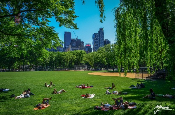 sebastien-massive-photography-central-park