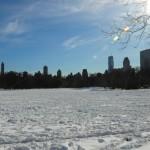 neige-central-park-new-york-20