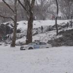Photo de Central Park sous la neige - Soizic - Décembre 2013