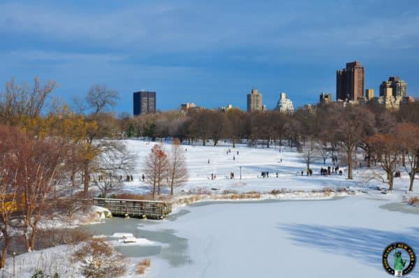 neige-central-park-new-york-4