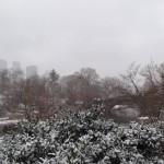 Photo de New York sous la neige - Soizic - Décembre 2013