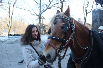 marion-chevaux-central-park