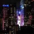 skylark-new-york-19