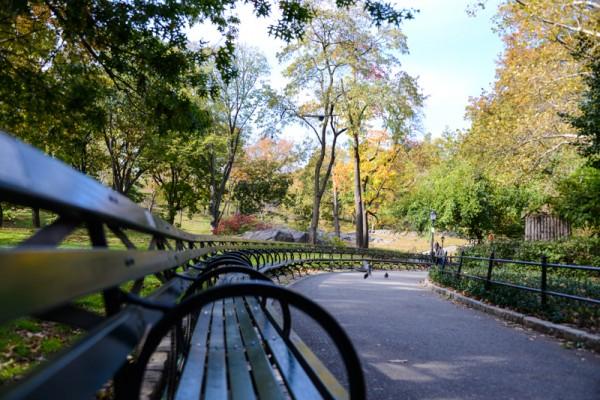 central-park-banc