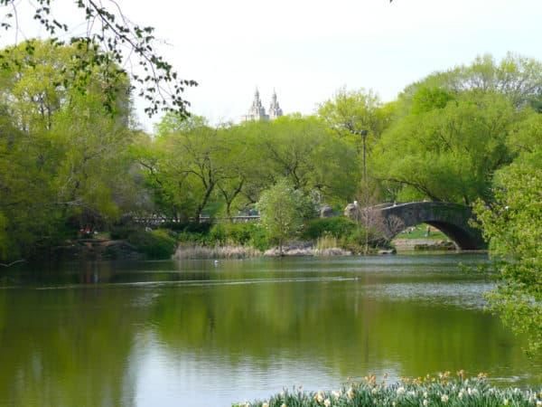 central-park-pond