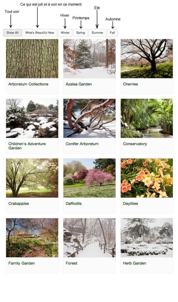 jardin-botanique-new-york--
