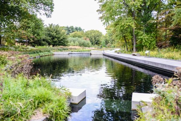 jardin-botanique-new-york-55