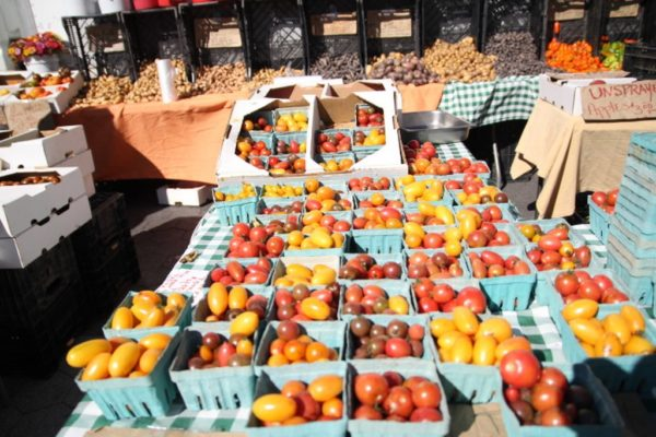 union Square Greenmarket (9)