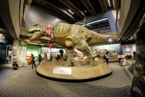 visiter Boston museum of science 11