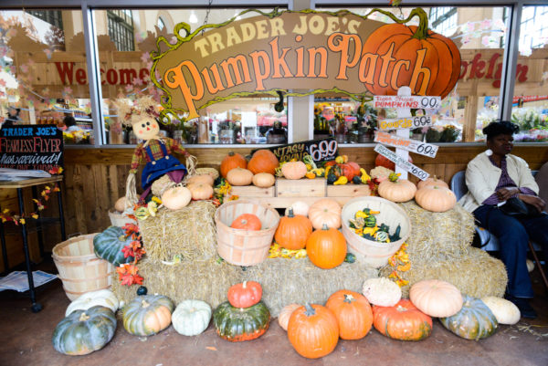 trader joe's halloween new york brooklyn