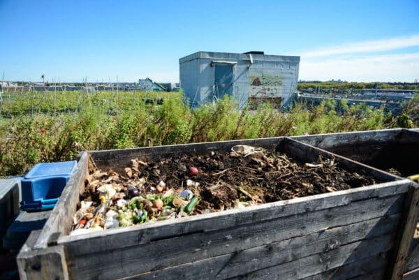 compost brooklyn grange farm queens