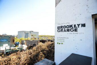 brooklyn-grange-farm-queens-3