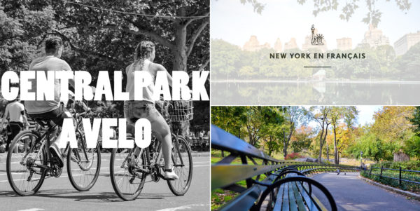 visite-guidee-central-park-new-york