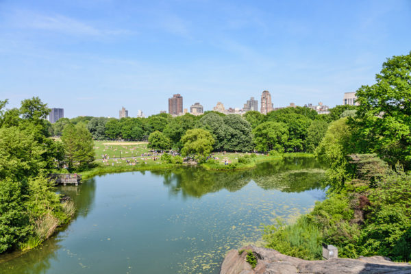 visite-guidee-central-park-velo-06